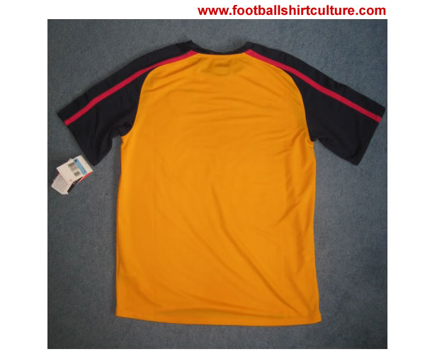 arsenal_08_09_away_nike_shirt_back.jpg